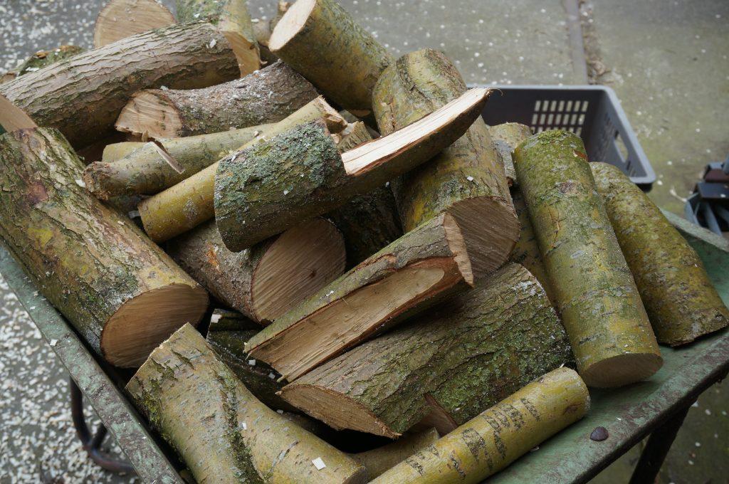 gehakte-hout-stammen